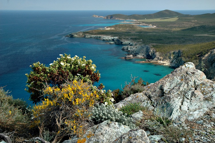 Walking Tours in Corsica